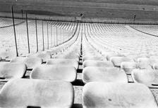 Olympiastadion München, 1975 Anheas/Timeline Images