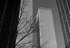 World Trade Center, 1973 hwh089/Timeline Images
