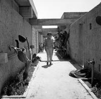 Betonbungalows in Ashkelon, 1968 Juergen/Timeline Images