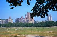 Central Park in New York Raigro/Timeline Images