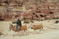Eselsreiter in Petra, 1984 Czychowski/Timeline Images