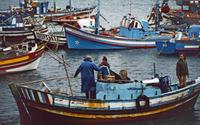 Fischerboot in Portugal, 1980er hwh089/Timeline Images