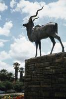 Kudustatue in Windhoek, 1974 Czychowski/Timeline Images