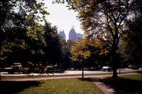 Kutsche im Central Park in New York, 1962 Juergen/Timeline Images