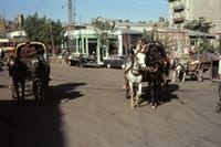 Kutscher in Erzurum, 1964 Czychowski/Timeline Images