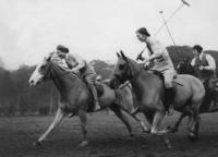 Ladies Polo im Reitsport Club Ham Common, London ullstein bild - ullstein bild/Timeline Images