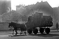 Pferdetransport in Ost-Berlin, 1962 Hermann Schröer/Timeline Images