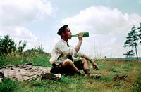 Picknick, 1955 Dillo/Timeline Images