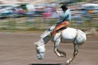 Rodeo in Grants, 1973 Raigro/Timeline Images
