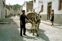 Spanien, 1959 Dillo/Timeline Images
