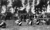 Windehunde am Start ullstein bild/Timeline Images
