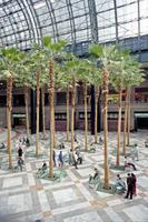 Winter Garden in New York, 1992 Raigro/Timeline Images