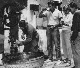 Sinai Brunnen QF